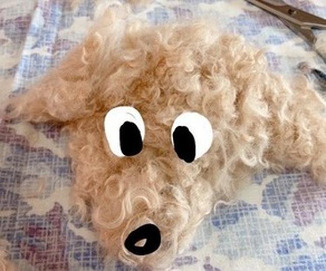 画像3: 愛犬もこ 初めてのおうちトリミング