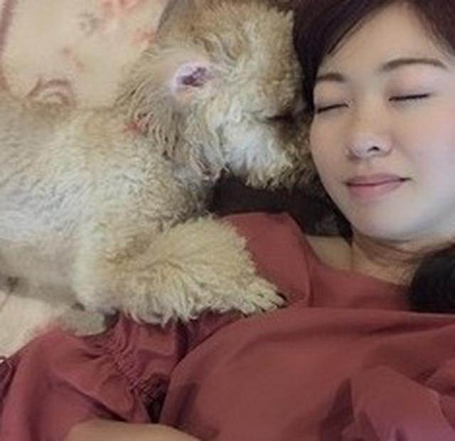 画像4: 愛犬もこ 初めてのおうちトリミング