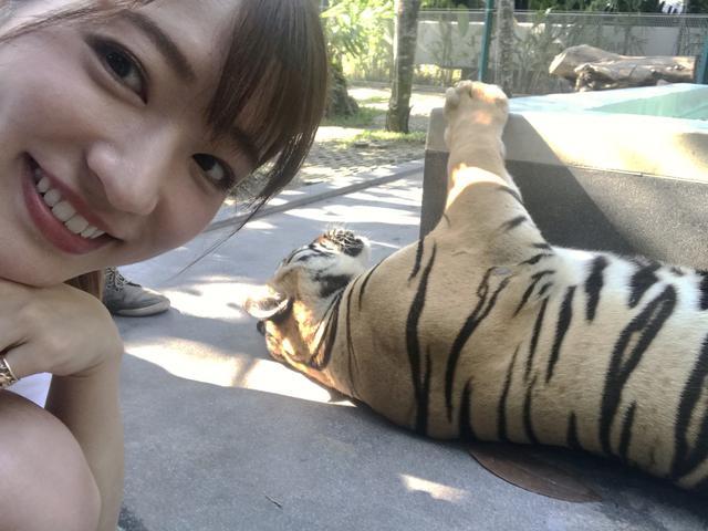 画像4: 日本平動物園!
