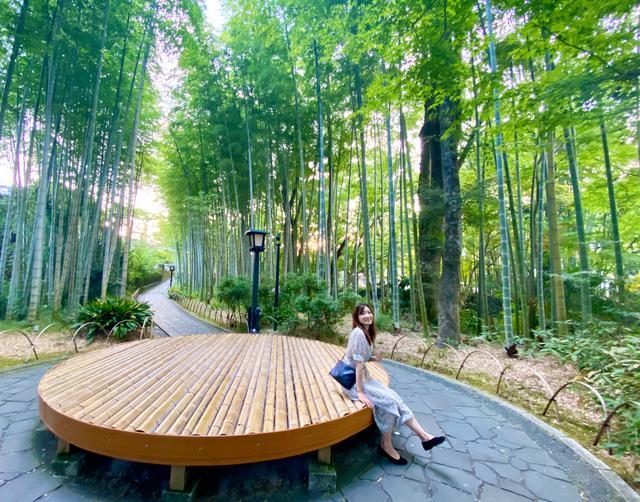 画像: 「竹林の小径」