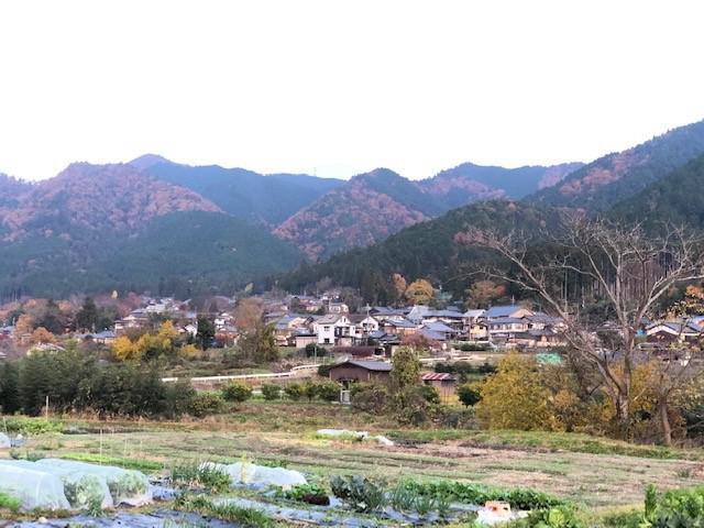 画像3: 京都旅への密かなあこがれ