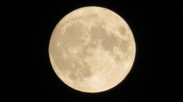 画像4: 中秋の名月 見られましたか?