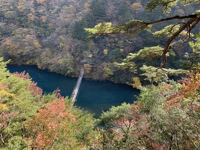 画像3: 紅葉真っ盛り!寸又峡の夢の吊り橋へ