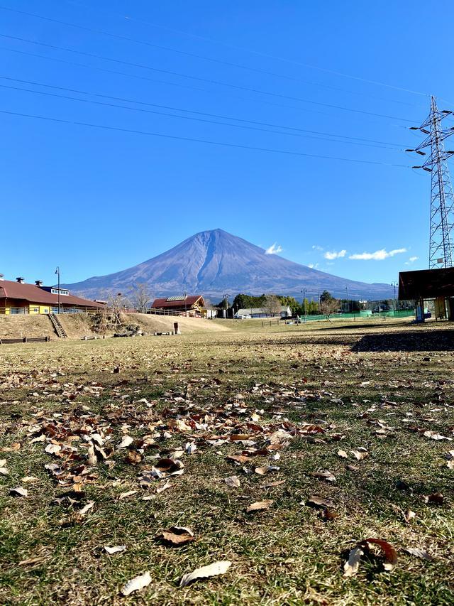画像: 夏の富士山みたい!