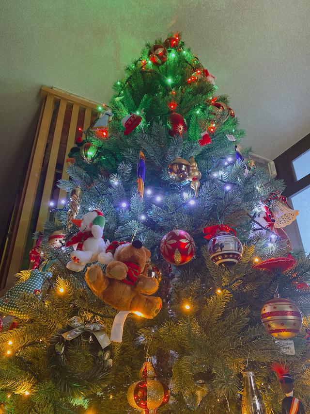 画像1: コロナ禍のクリスマス