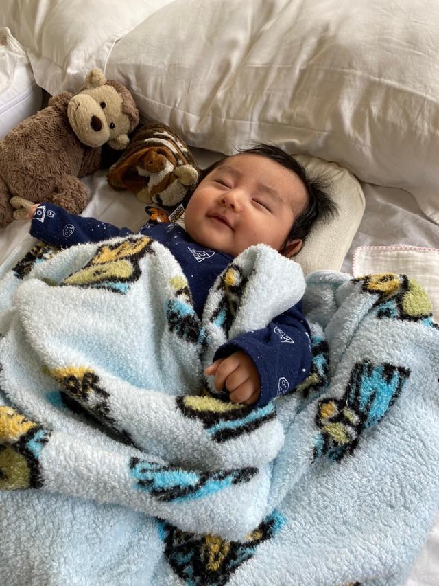 画像: 隣で丸まっているリスは、兄が赤ちゃんの時からの相棒=りすぼう。久保兄妹はぬいぐるみを愛しています。
