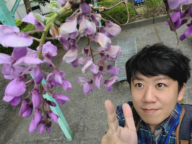 画像1: 街は春の花であふれてる!