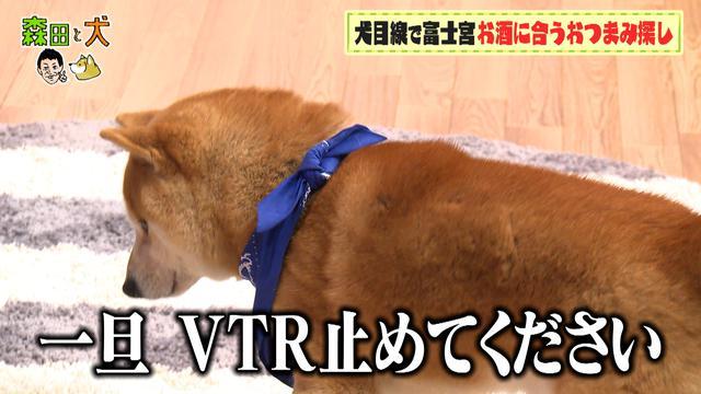 画像5: ◆ロケVTRが流れ始めると…