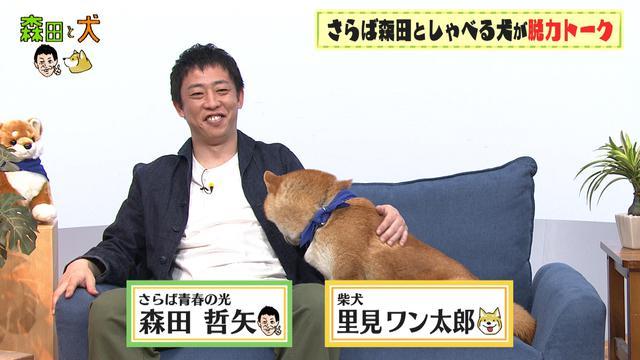 画像: さらば青春の光・森田、相方を柴犬に変えて番組を進行するも…