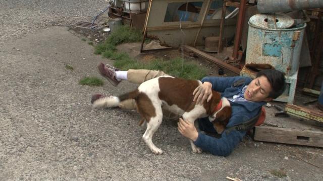 画像: 須藤と犬