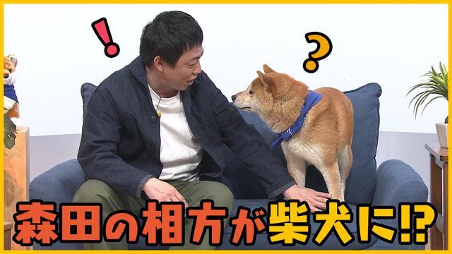 画像: 【森田と犬】さらば青春の光・森田と柴犬が送る「笑いあり、癒しあり」の超脱力系バラエティ!第一弾 – LOOK動画