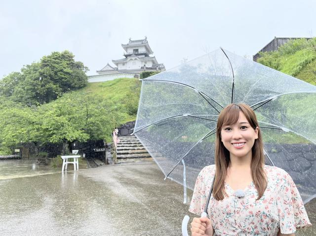 画像: 高知城と兄弟城!? 天守閣でお殿様が「良き眺めじゃ」と感じることはなかった!?