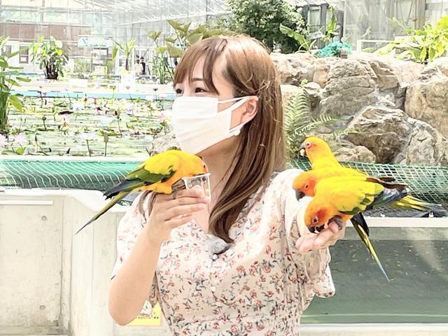 画像: 鳥!器用に食べてくれるから怖くなくなりました。