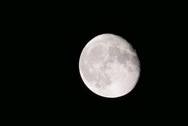 画像3: もうすぐ十三夜、後の名月です