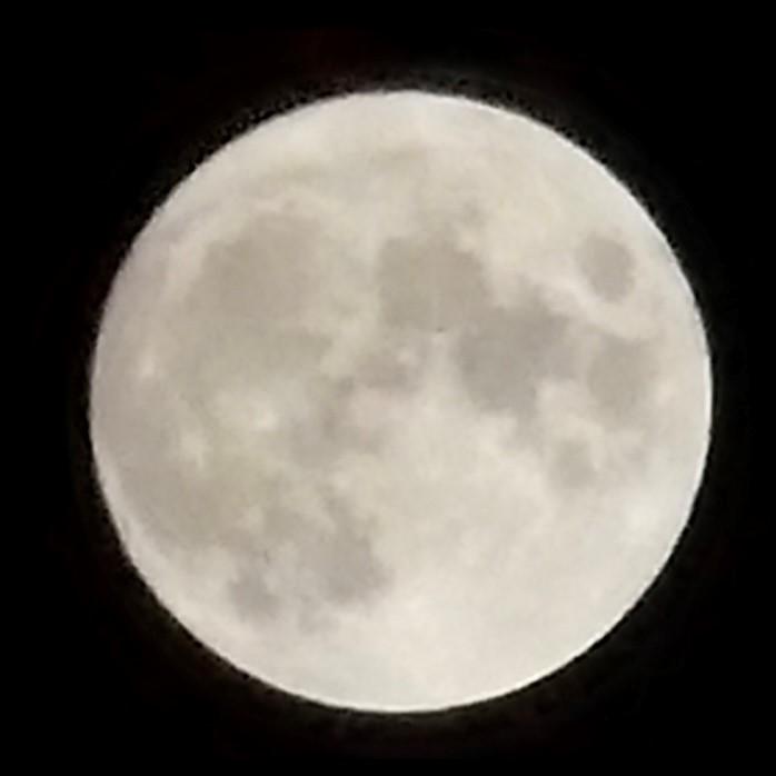 画像2: もうすぐ十三夜、後の名月です