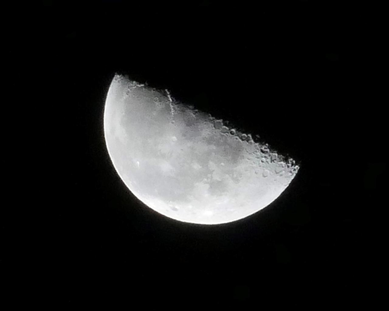 画像6: もうすぐ十三夜、後の名月です
