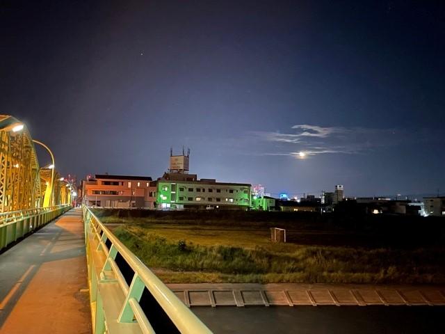 画像7: もうすぐ十三夜、後の名月です