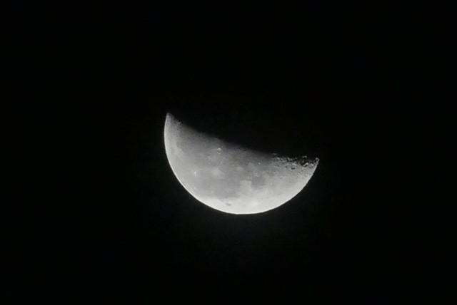 画像5: もうすぐ十三夜、後の名月です