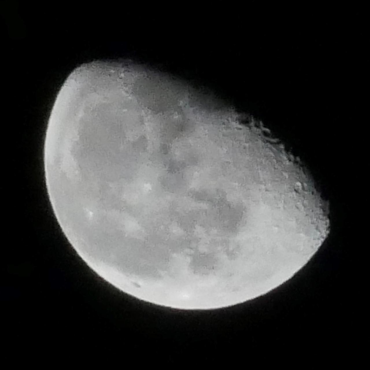 画像4: もうすぐ十三夜、後の名月です