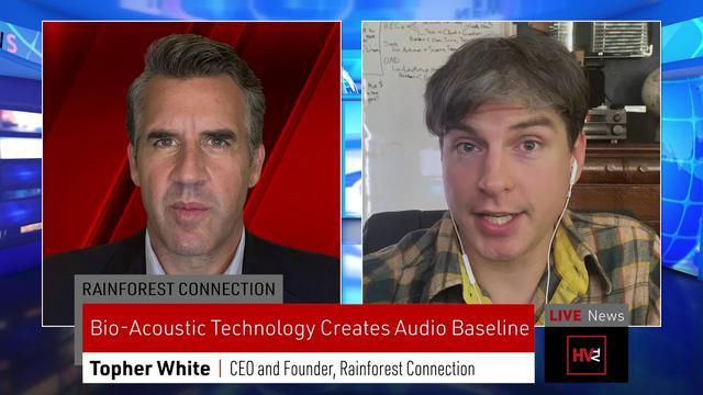 画像: Bio-Acoustics and AI Help Save Rainforests www.youtube.com