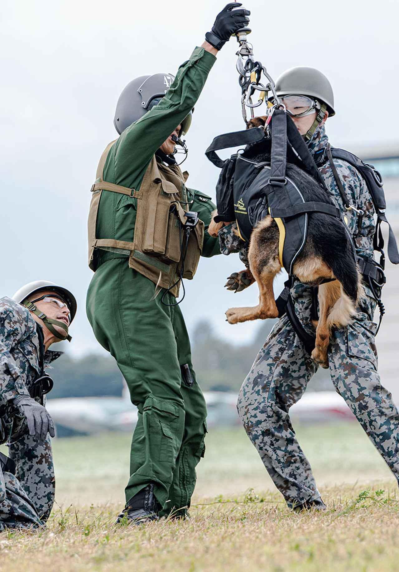 画像: ホイスト装置により、地上に降ろされたハンドラーと警備犬を、待機した ロードマスター が、がっちりとサポートする
