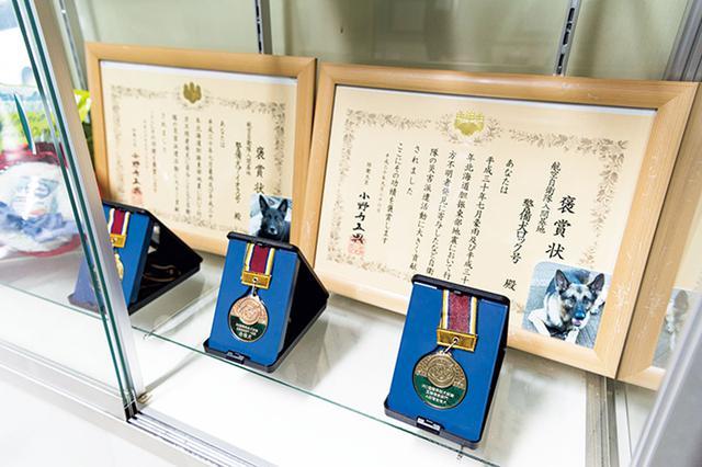 画像: 隊舎の入り口には、歴代の警備犬が災害派遣での活動において行方不明者発見に寄与したことをたたえる防衛大臣からの褒賞状や、競技会で優秀な成績を修めた賞状などが飾られていた