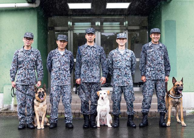 画像: 入間基地の警備犬管理班のメンバー。ここで警備犬として務めた犬たちは、10歳前後で肉体的な衰えが現れると現役を引退。引退後は新人ハンドラーの訓練相手などを務めながらここで余生を過ごし、最期まで隊員たちが世話をする。警備犬を引退したラブラドールレトリバーのトレビ号(8歳・写真中央)は、部隊のマスコット的存在だ