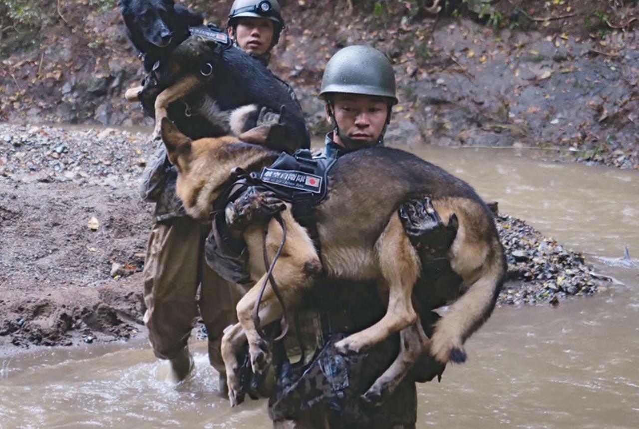 画像: 2019年10月、相模原市での台風19号災害派遣で、捜索現場に向かう空自の隊員と警備犬。台風による被害で足場が川のようになっており、隊員が警備犬を抱えて渡った(写真提供/防衛省)