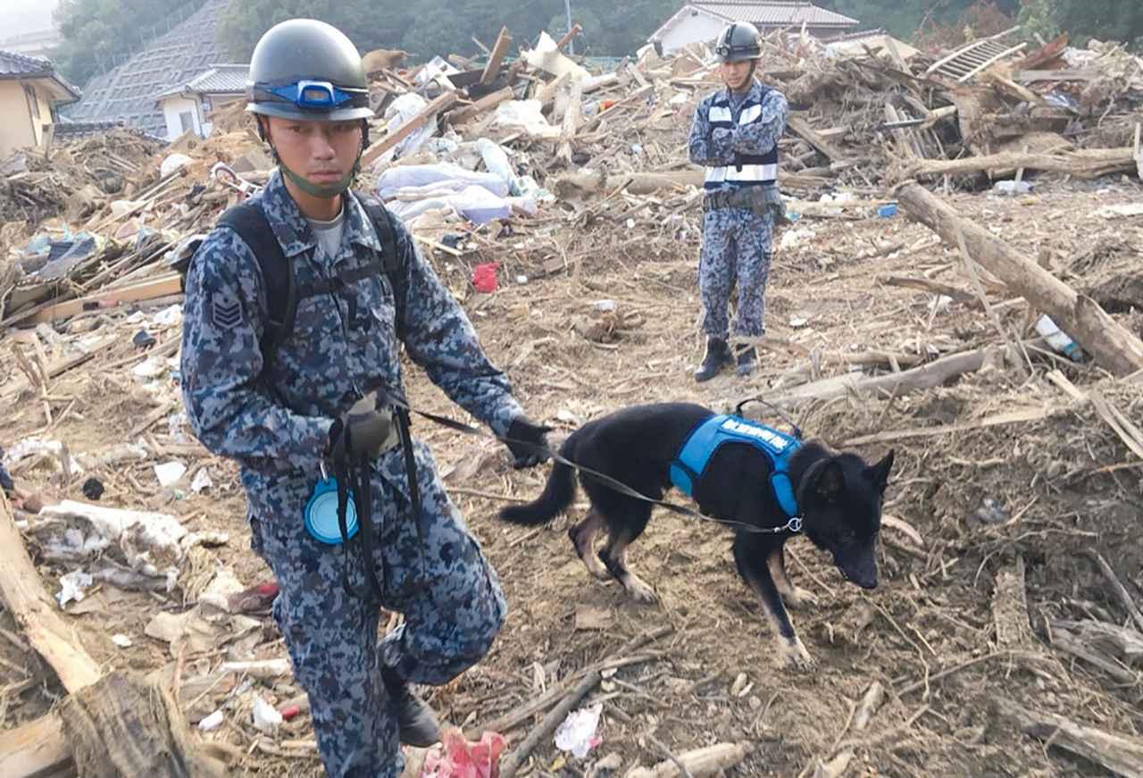 画像: 18年7月西日本豪雨災害派遣での捜索活動。がれきや土砂のまわりを懸命に捜索し、2人の行方不明者を空自の警備犬が発見した