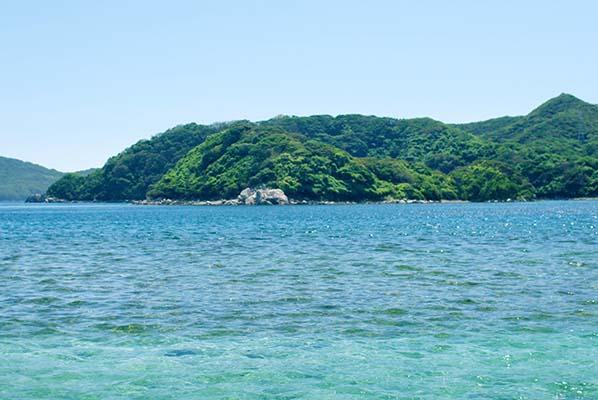 五島市 事例