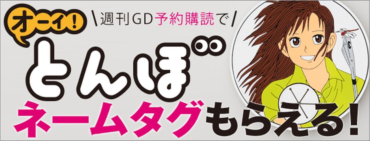 週刊GD定期購読とんぼネームタグプレゼント