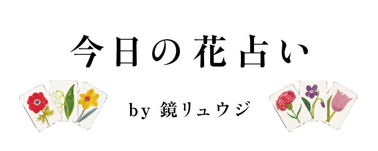 今日の花占い by鏡リュウジ