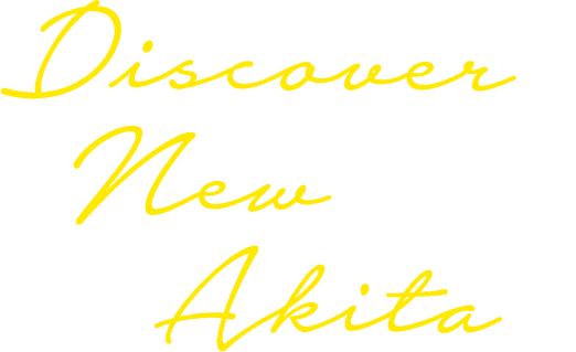 discover's new akita