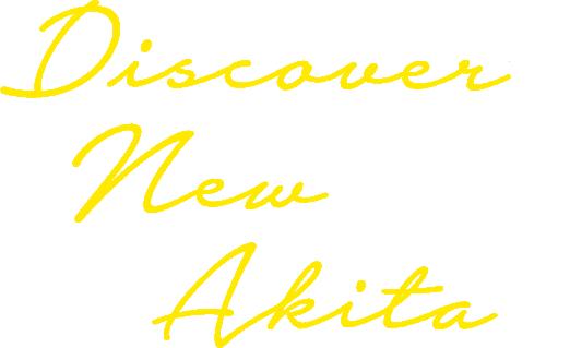 discover's new akita