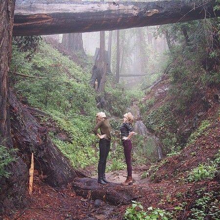 ファイファー ビッグ サー州立公園で、大自然の空気を吸うテイラー&カーリー。