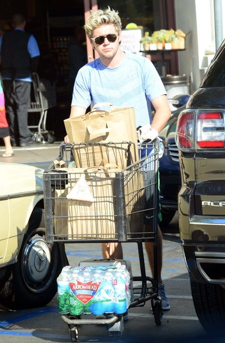 ナイル・ホーラン ワン・ダイレクション スーパー Niall Horan of the hit boy band One Direction stocks up on groceries including 2 twelve packs of Stella Artois from Gelsons in West Hollywood, Ca