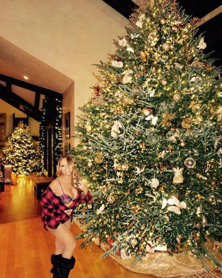 マライア・キャリー Mariah Carey クリスマスツリー 2016