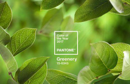 2017年の色 パントン Pantone グリーナリー Greenery