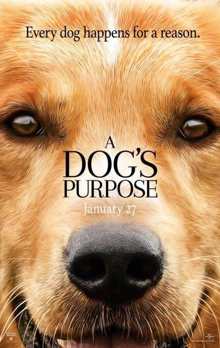 A Dog's Purpose ア・ドッグズ・パーパス ポスター
