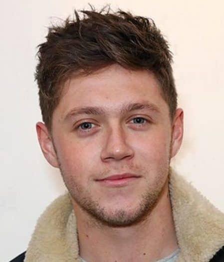 ナイル・ホーラン ヘアイメチェン Niall Horan 2017年1月