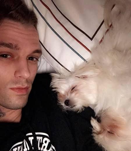 アーロン・カーター 「差別発言で暴行被害」報道に反論 愛犬とベッドで寝ている写真をツイート