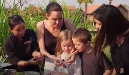 アンジェリーナ・ジョリー ノックス ヴィヴィアン Knox Vivienne Angelina Jolie 昆虫食  Eat Bugs Spiders BBC World News