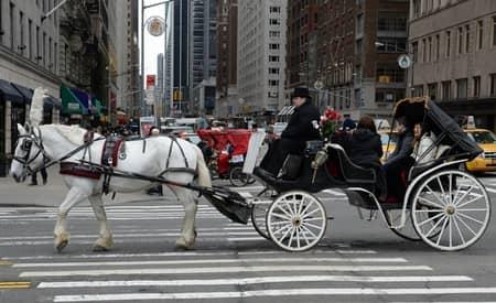 観光馬車 NY セントラルパーク Horse Carriage NY Central Park