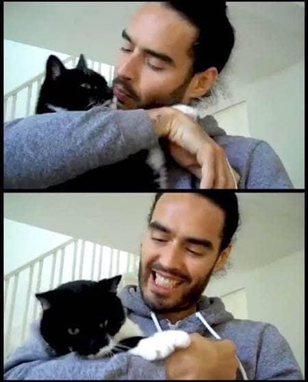 ラッセル・ブランド モリッシー 猫  Russell Brand Cat Morrissey