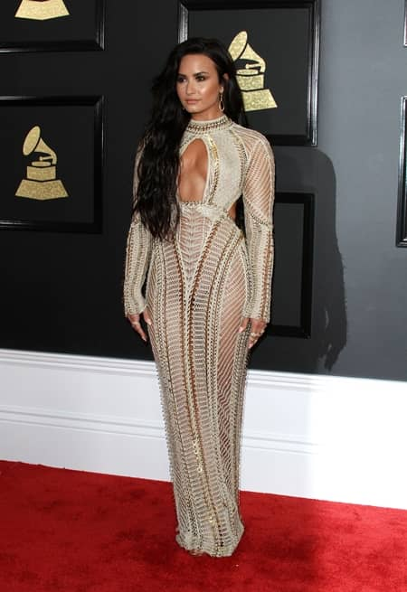 デミ・ロヴァート Demi Lovato 第59回 グラミー賞 2017年 レッドカーペット 着用ドレス ブランド