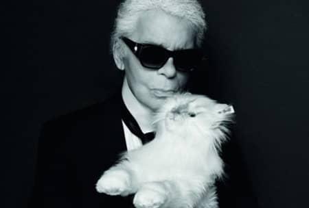 シュペット・ラガーフェルド Choupette Lagerfeld 猫 カール・ラガーフェルド シュペット・ラガーフェルド Karl Lagerfeld セレブ猫 世界一有名なネコ 秘話 ぬいぐるみ 発売 5月