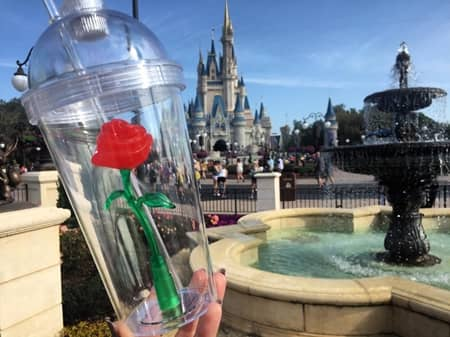 美女と野獣 カップ ディズニー バラ Beauty and the Beast Cup Disney Land
