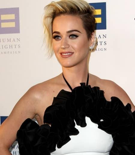 ケイティ・ペリー Katy Perry Human Rights Campaign