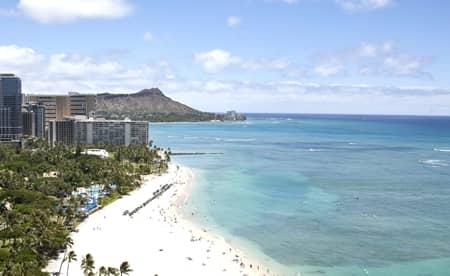 デルタ航空 ラシット russet バッグ コラボ ハワイ チケット 当たる 旅行 便利 トート ポーチ ショルダーバッグ