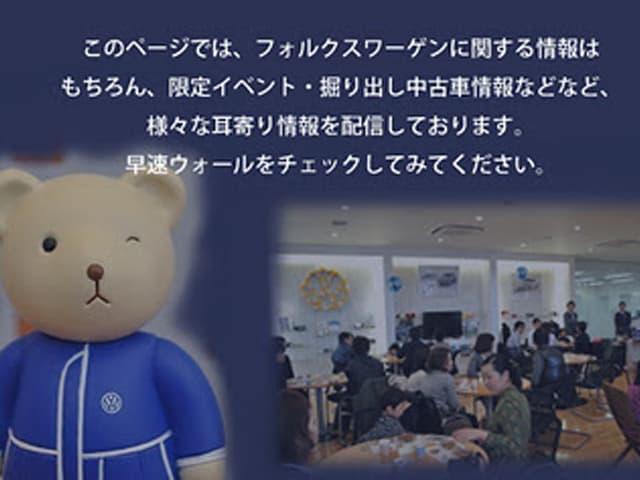 vwhashimoto_12220_2.jpg